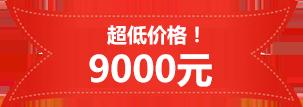 low-price-9000